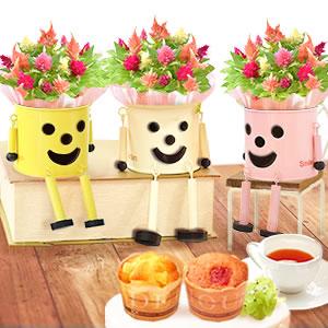 母の日 2021 ブリキマンとケイトウ鉢植え(3号鉢)カップケーキ まとめ