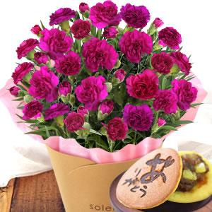 母の日 2021 カーネーション 色 紫色