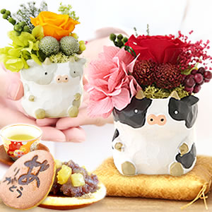 母の日プレゼント一寸牛【全部】
