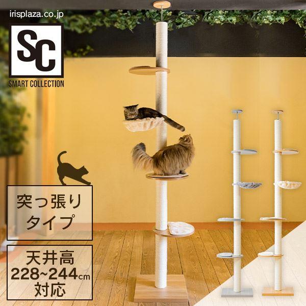 木登りキャットタワー(スマコレ)