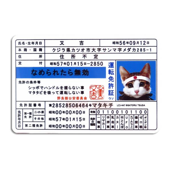 なめ猫 なめねこ ステッカー 車 リアガラス リヤガラス バンパー スマホ 免許証 運転免許/ゼネラルステッカー LCS-447