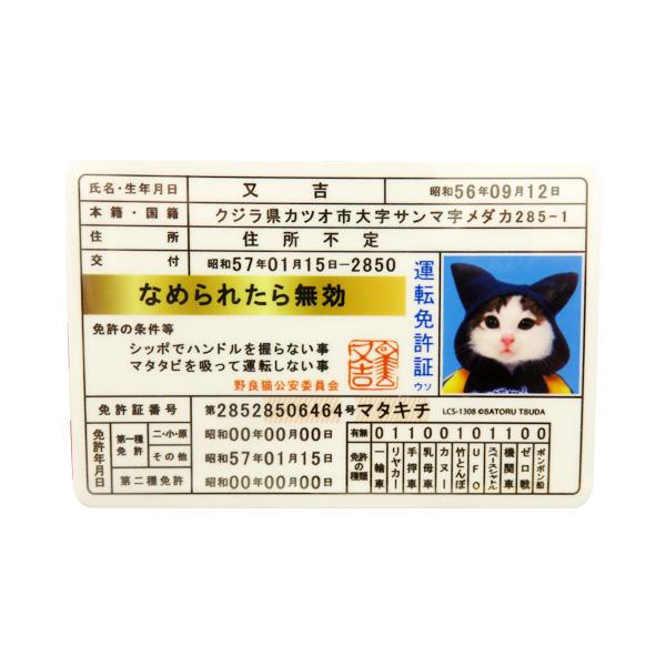 ゼネラルステッカー なめ猫 ステッカー 免許証 又吉 なめんなよ デカール シール ネコ 車 リアガラス バンパー LCS-1308