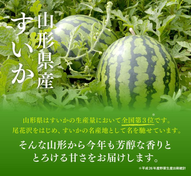 山形県産すいか   山形県はすいかの生産量において全国第3位です。尾花沢をはじめ、すいかの名産地として名を馳せています。そんな山形から今年も芳醇な香りととろける甘さをお届けします。