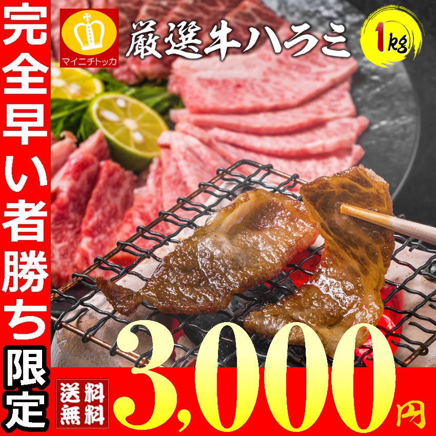 【三太郎の日限定】牛ハラミ1キロ 即日発送 訳あり焼肉 牛肉 タレ漬け BBQ 焼き肉