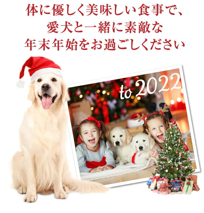 犬用 クリスマスケーキ