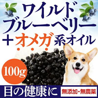 犬用 ブルーベリー