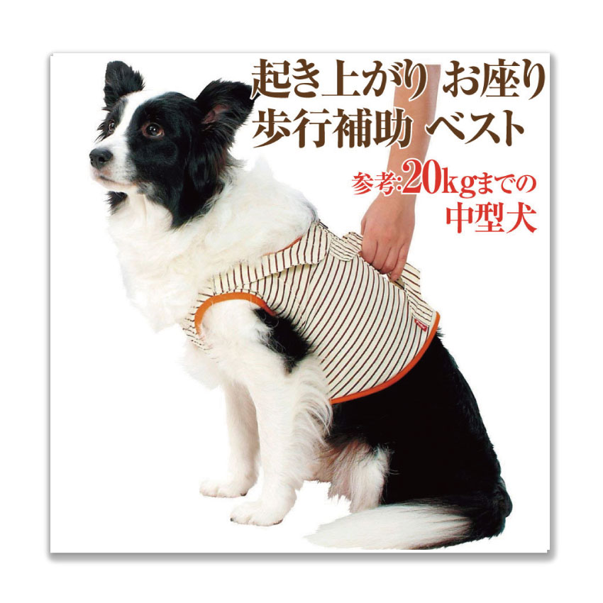 犬用 介護品